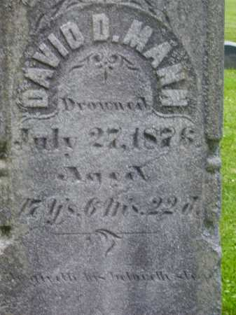 MANN, DAVID D.- CLOSEVIEW - Stark County, Ohio   DAVID D.- CLOSEVIEW MANN - Ohio Gravestone Photos