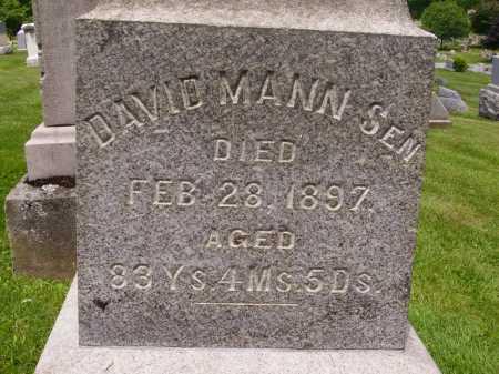 MANN, DAVID MANN, SR. - Stark County, Ohio | DAVID MANN, SR. MANN - Ohio Gravestone Photos