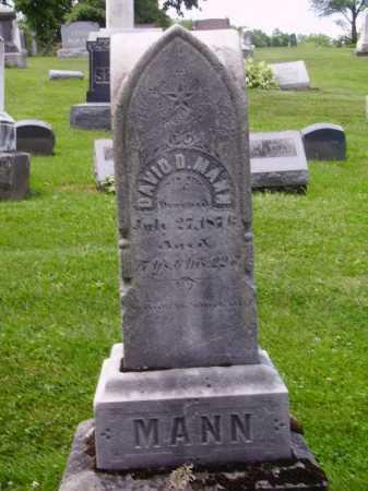 MANN, DAVID D. - MONUMENT - Stark County, Ohio | DAVID D. - MONUMENT MANN - Ohio Gravestone Photos