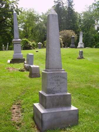 MANN, MOUNMENT - Stark County, Ohio   MOUNMENT MANN - Ohio Gravestone Photos