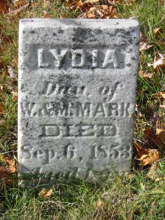 MARK, LYDIA - Stark County, Ohio | LYDIA MARK - Ohio Gravestone Photos