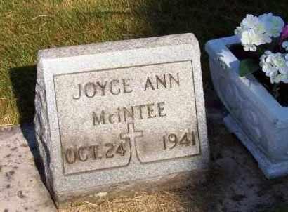 MCINTEE, JOYCE ANN - Stark County, Ohio | JOYCE ANN MCINTEE - Ohio Gravestone Photos