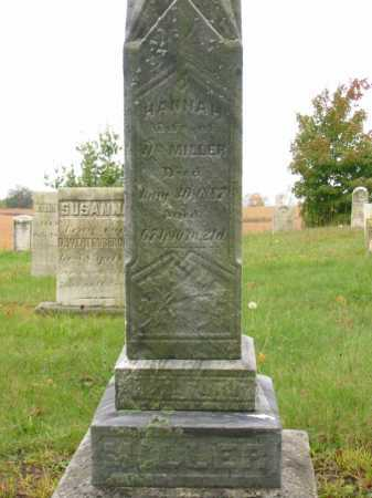 MILLER, HANNAH - Stark County, Ohio | HANNAH MILLER - Ohio Gravestone Photos