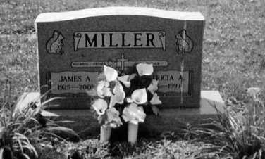 MILLER, JAMES A. - Stark County, Ohio | JAMES A. MILLER - Ohio Gravestone Photos