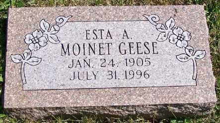 MOINET GEESE, ESTA A. - Stark County, Ohio | ESTA A. MOINET GEESE - Ohio Gravestone Photos