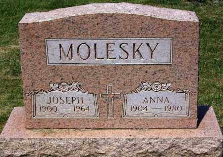 MOLESKY, ANNA - Stark County, Ohio | ANNA MOLESKY - Ohio Gravestone Photos