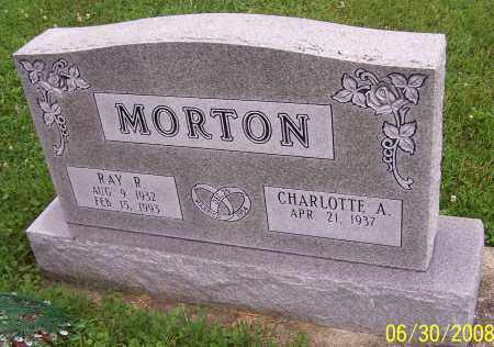 MORTON, RAY R. - Stark County, Ohio | RAY R. MORTON - Ohio Gravestone Photos