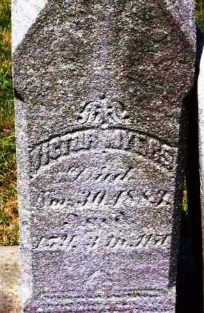 MYERS, VICTOR - Stark County, Ohio | VICTOR MYERS - Ohio Gravestone Photos