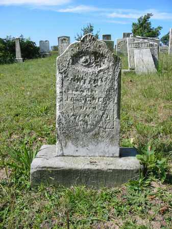 NEES, INFANT - Stark County, Ohio | INFANT NEES - Ohio Gravestone Photos