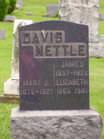NETTLE, ELIZABETH - Stark County, Ohio | ELIZABETH NETTLE - Ohio Gravestone Photos
