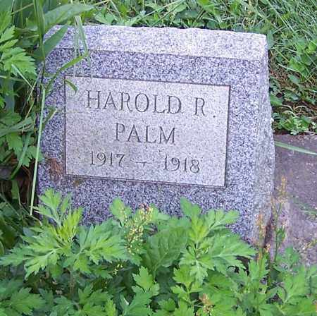 PALM, HAROLD R. - Stark County, Ohio | HAROLD R. PALM - Ohio Gravestone Photos