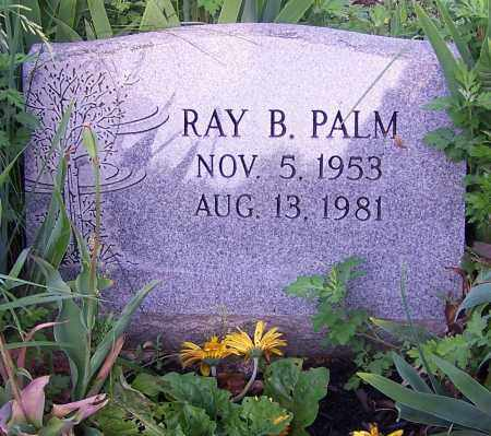 PALM, RAY B. - Stark County, Ohio | RAY B. PALM - Ohio Gravestone Photos