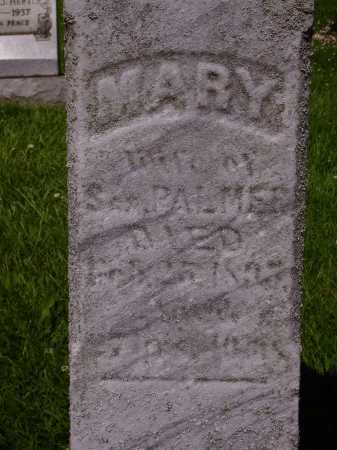 PALMER, MARY - CLOSEVIEW - Stark County, Ohio | MARY - CLOSEVIEW PALMER - Ohio Gravestone Photos