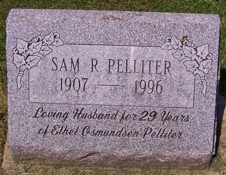 PELLITER, SAM R. - Stark County, Ohio | SAM R. PELLITER - Ohio Gravestone Photos