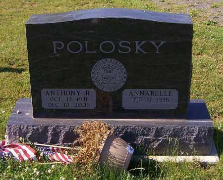 POLOSKY, ANTHONY R. - Stark County, Ohio | ANTHONY R. POLOSKY - Ohio Gravestone Photos