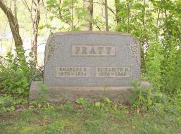 PRATT, ELIZABETH M - Stark County, Ohio | ELIZABETH M PRATT - Ohio Gravestone Photos