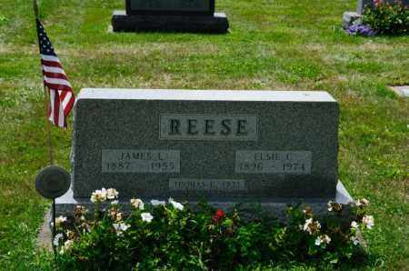 REESE, THOMAS C. - Stark County, Ohio | THOMAS C. REESE - Ohio Gravestone Photos
