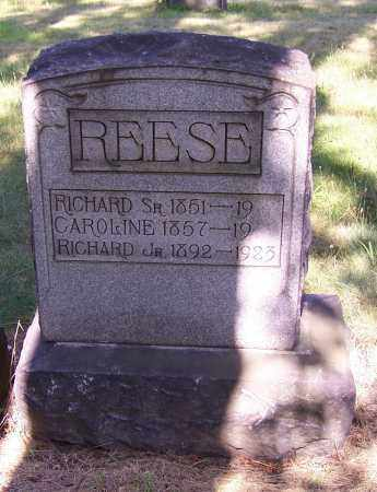 REESE, RICHARD JR. - Stark County, Ohio | RICHARD JR. REESE - Ohio Gravestone Photos