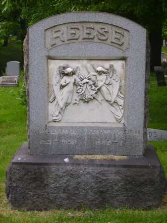 REESE, AMANDA - MONUMENT - Stark County, Ohio | AMANDA - MONUMENT REESE - Ohio Gravestone Photos