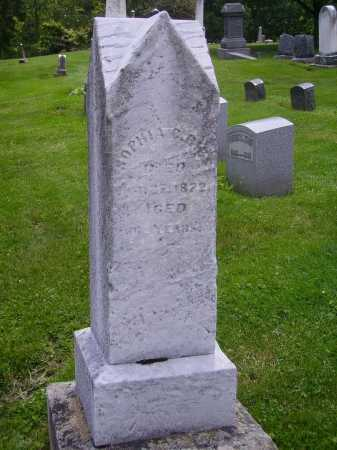 REIS, SOPHIA C. - MONUMENT - Stark County, Ohio   SOPHIA C. - MONUMENT REIS - Ohio Gravestone Photos