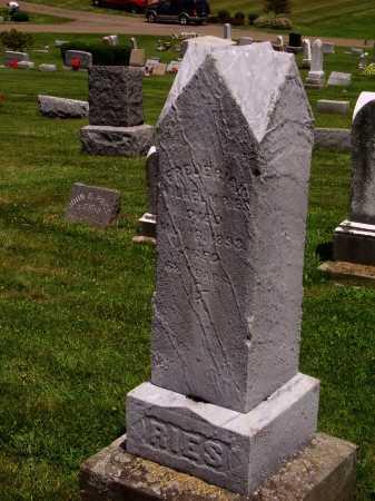 RIES, FREDERIAN RACHEL - MONUMENT - Stark County, Ohio | FREDERIAN RACHEL - MONUMENT RIES - Ohio Gravestone Photos