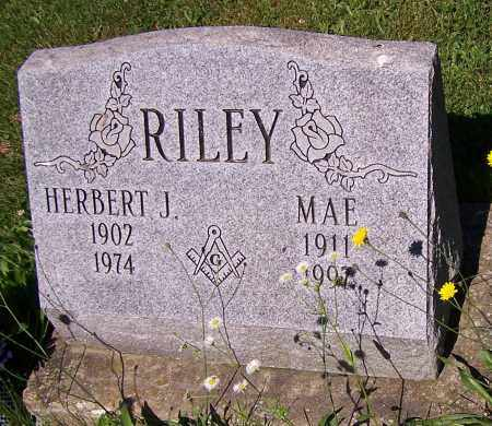 RILEY, HERBERT J. - Stark County, Ohio | HERBERT J. RILEY - Ohio Gravestone Photos
