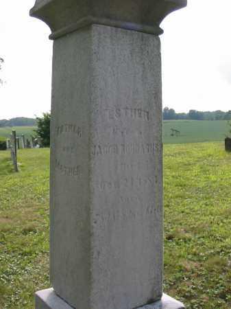 ROUDABUSH, ESTHER - Stark County, Ohio | ESTHER ROUDABUSH - Ohio Gravestone Photos