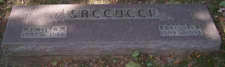 SACCUCCI, EMIL A. - Stark County, Ohio | EMIL A. SACCUCCI - Ohio Gravestone Photos