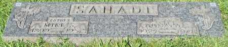 SAHADI, DONALD S. - Stark County, Ohio | DONALD S. SAHADI - Ohio Gravestone Photos