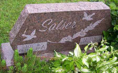 SALSER, EVELYM L. - Stark County, Ohio | EVELYM L. SALSER - Ohio Gravestone Photos