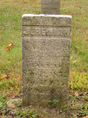 SCHWARTZ, JEREMIAH - Stark County, Ohio | JEREMIAH SCHWARTZ - Ohio Gravestone Photos