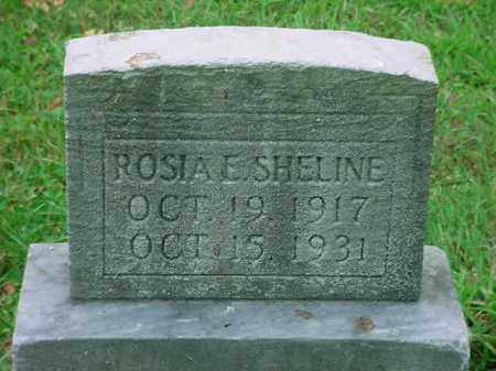 SHELINE, ROSIA E - Stark County, Ohio | ROSIA E SHELINE - Ohio Gravestone Photos