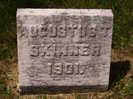 SKINNER, AUGUSTUS T. - Stark County, Ohio | AUGUSTUS T. SKINNER - Ohio Gravestone Photos