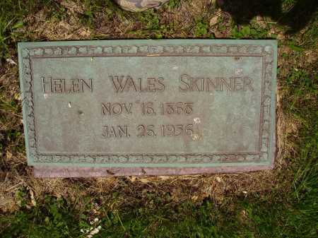 SKINNER, HELEN WALES - Stark County, Ohio | HELEN WALES SKINNER - Ohio Gravestone Photos