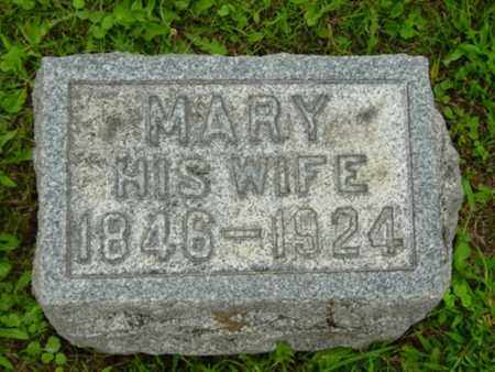 SWAN, MARY - Stark County, Ohio | MARY SWAN - Ohio Gravestone Photos