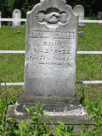 SWAN, THEODORE - Stark County, Ohio | THEODORE SWAN - Ohio Gravestone Photos