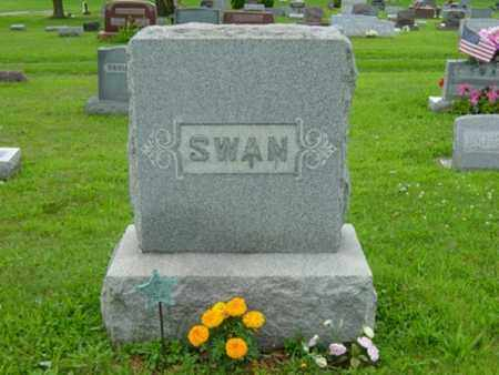 SWAN, WILLIAM - Stark County, Ohio | WILLIAM SWAN - Ohio Gravestone Photos