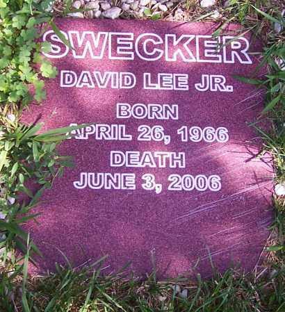 SWECKER, DAVID LEE JR. - Stark County, Ohio | DAVID LEE JR. SWECKER - Ohio Gravestone Photos