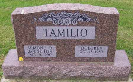 TAMILIO, DOLORES - Stark County, Ohio | DOLORES TAMILIO - Ohio Gravestone Photos