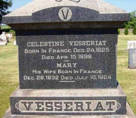 VESSERIAT, MARY - Stark County, Ohio | MARY VESSERIAT - Ohio Gravestone Photos