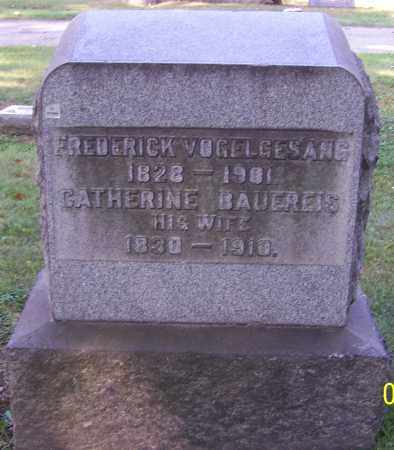 VOGELGESANG, CATHERINE - Stark County, Ohio | CATHERINE VOGELGESANG - Ohio Gravestone Photos