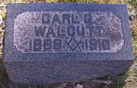 WALCUTT, CARL G. - Stark County, Ohio | CARL G. WALCUTT - Ohio Gravestone Photos