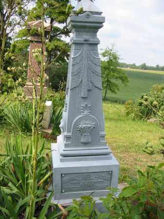 WARSTLER, ALMIRA - Stark County, Ohio | ALMIRA WARSTLER - Ohio Gravestone Photos