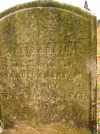WEARY, ELIZABETH - Stark County, Ohio | ELIZABETH WEARY - Ohio Gravestone Photos