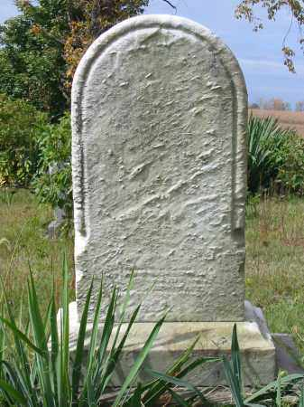 WERTENBERGER, MARTHA - Stark County, Ohio | MARTHA WERTENBERGER - Ohio Gravestone Photos