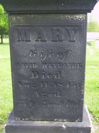 WEYGANDT, MARY - Stark County, Ohio | MARY WEYGANDT - Ohio Gravestone Photos