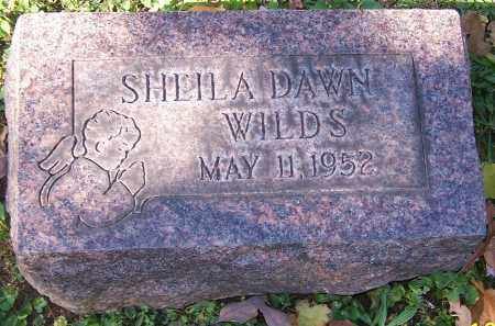 WILDS, SHEILA DAWN - Stark County, Ohio | SHEILA DAWN WILDS - Ohio Gravestone Photos