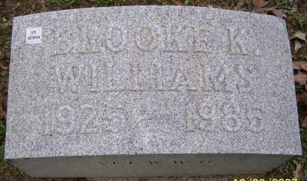 WILLIAMS, BROOKE K. - Stark County, Ohio | BROOKE K. WILLIAMS - Ohio Gravestone Photos