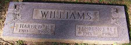 WILLIAMS, FLORENCE E. - Stark County, Ohio | FLORENCE E. WILLIAMS - Ohio Gravestone Photos