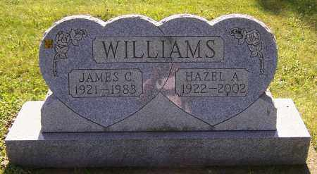 WILLIAMS, JAMES C. - Stark County, Ohio | JAMES C. WILLIAMS - Ohio Gravestone Photos